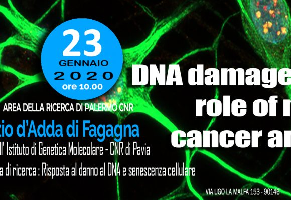 23th january at 10 a.m. SEMINARY Dr. Fabrizio d'Adda di Fagagna: DNA damage and the role of ncRNA in cancer and aging