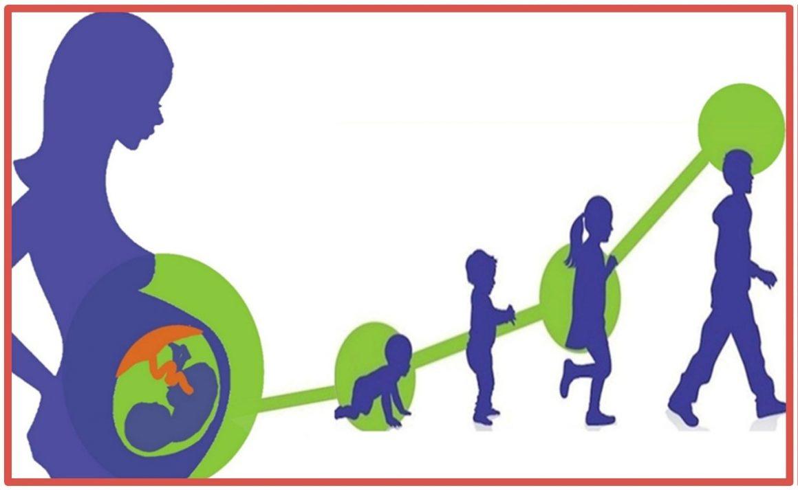 CISAS: Centro Internazionale di Studi Avanzati su Ambiente, ecosistema e Salute umana