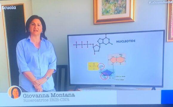 RAISCUOLA. Giovanna Montana. Caratteristiche del DNA Zettel Maturità – Biologia