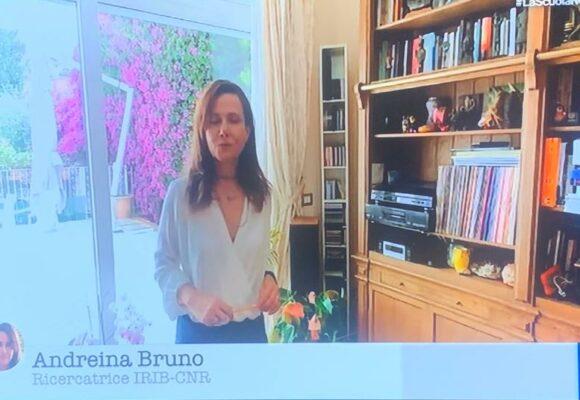 RAISCUOLA. Andreina Bruno. Insulina, glucagone e glicemia Zettel Maturità – Scienze