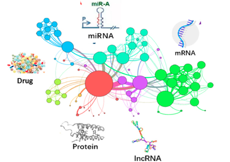 OBIND: Oncological therapy through Biological Interaction Network Discovery