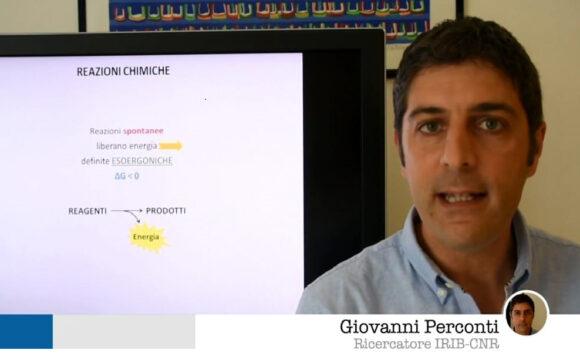 RAISCUOLA. Giovanni Perconti. ATP: energia per le cellule Zettel Maturità – Biologia