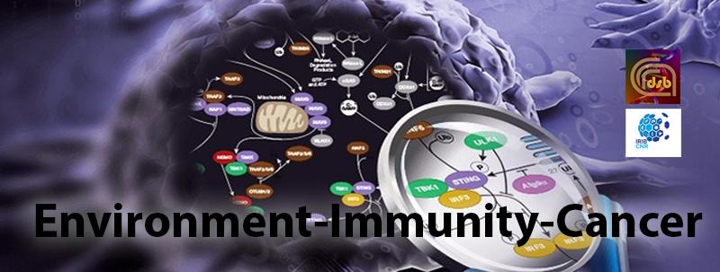 Environment – Immunity – Cancer